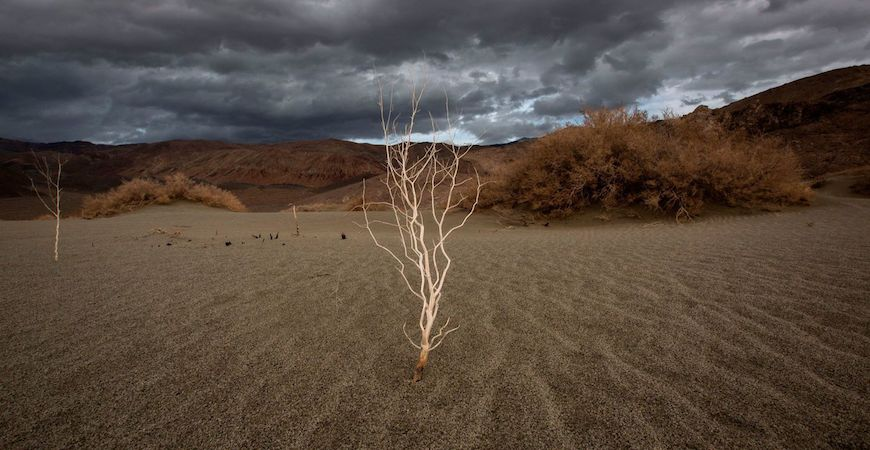 A storm approaches desert sands near Lone Pine, Calif. California agriculture faces a future of drought and flooding. (David McNew / AFP/Getty Images)
